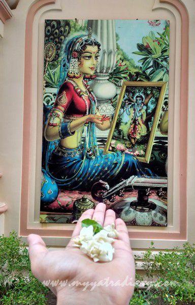 ISKCON Temple offering Radha Rani Krishna, Vrindavan, Uttar Pradesh
