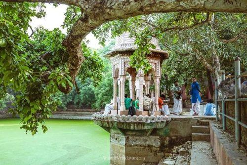 Visit to Biharvan (Album of photos)